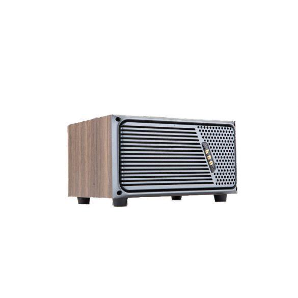 R8 CCC233 Retro Bluetooth reproduktor