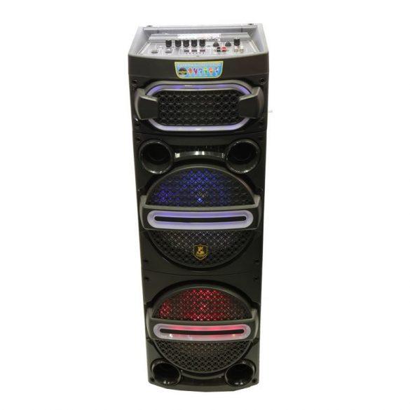 R8 CCC234 Bluetooth reproduktor s dvoma mikrofónmi