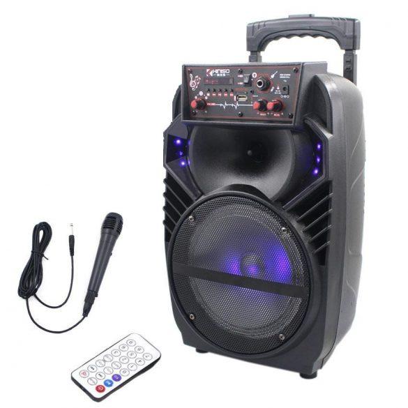 R8 QS801 Bluetooth reproduktor s karaoke mikrofónom